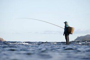 Read more about the article Quelques conseils pour réussir ses parties de pêche